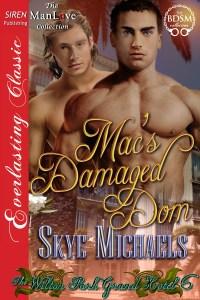 Skye-Michaels-erotic-books-sex-skye michaels books-BDSM-man-love-damaged-dom