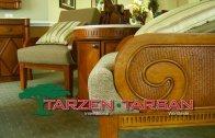 Tarzen-Tarsan Sales Promo v12