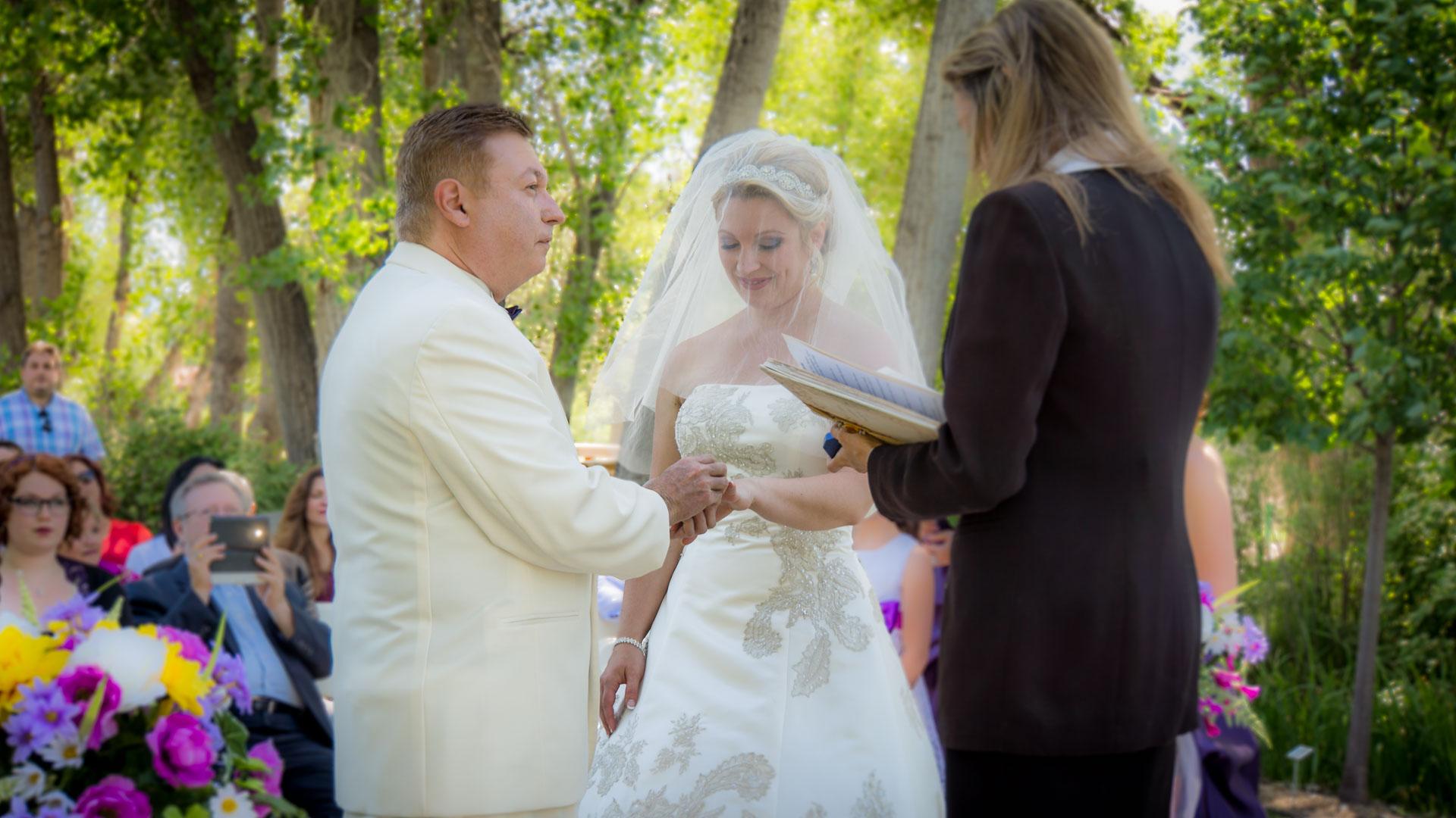Wedding-Header-15