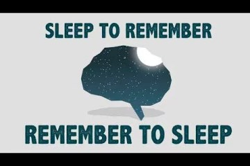 Sleep + memory (Ted video)