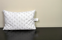 My Pillow Review | Sleepopolis