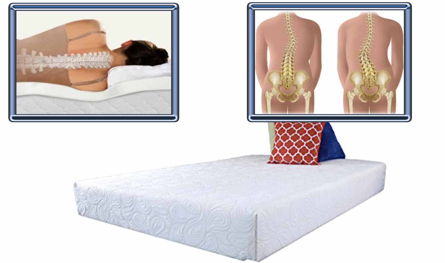 Best Traditional Mattress The 2 Best Mattresses For Scoliosis To Buy In 2019
