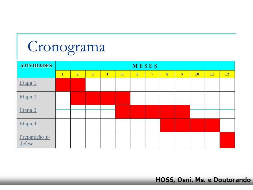 Cronograma M E S E S Etapa 1 Etapa 2 Etapa 3 Etapa 4