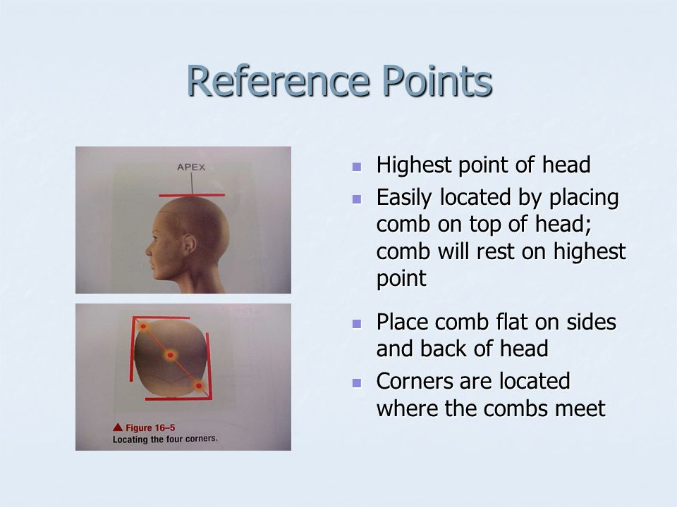 Hair Cutting Reference Points are used to establish design - point of reference