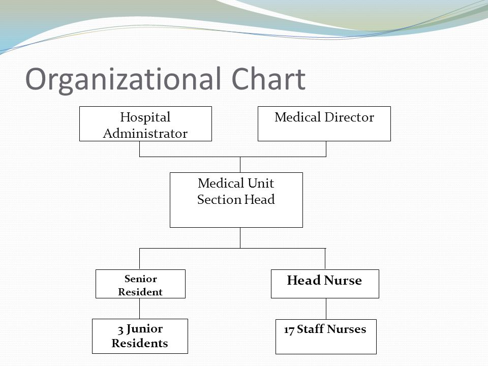 Management St Louis University Hospital of the Sacred Heart - ppt - hospital organizational chart