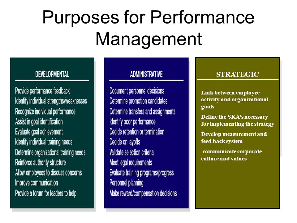 Performance Management Ppt Video Online Download Purpose Employee