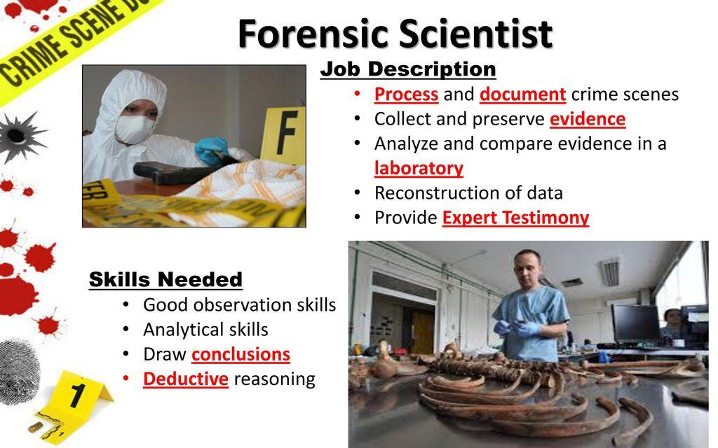 forensic scientist job descriptions -
