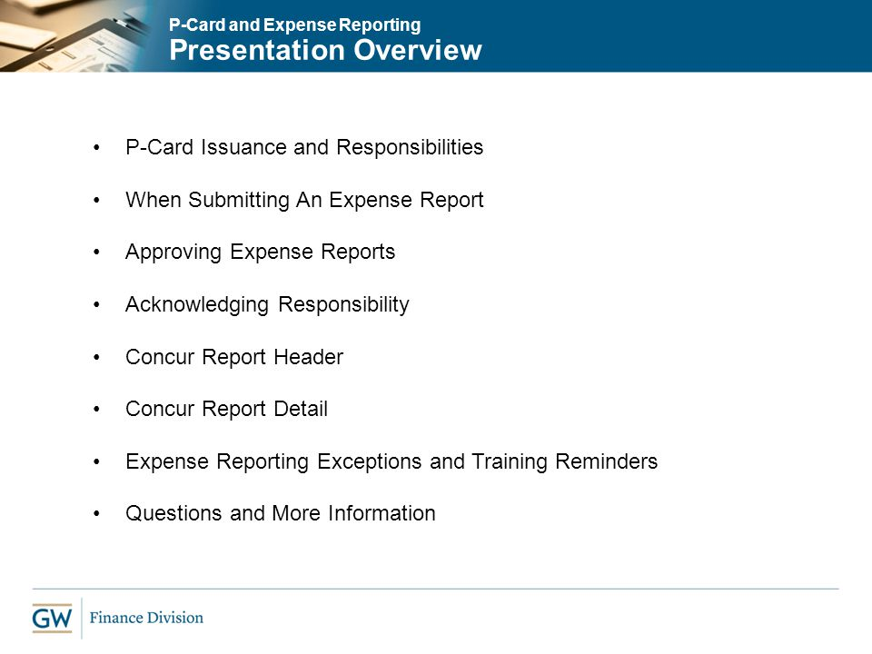 online expense report