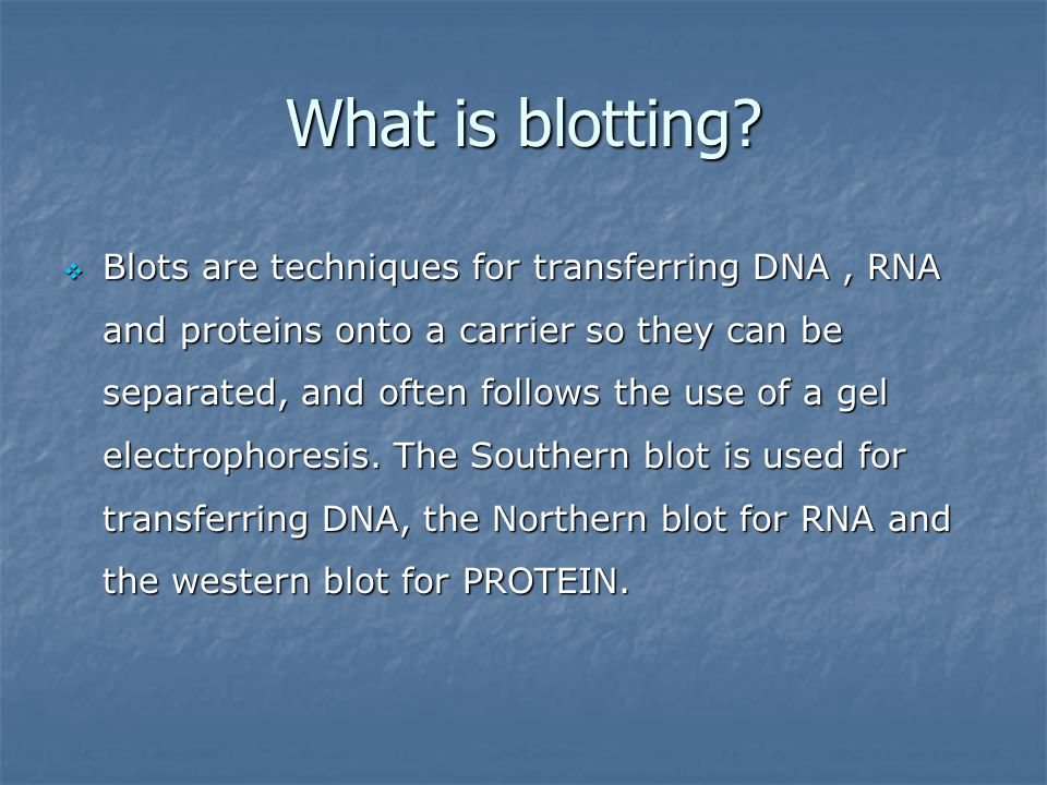 BLOTTING TECHNIQUES By Abdullah Al-Hatami PhD student - ppt download