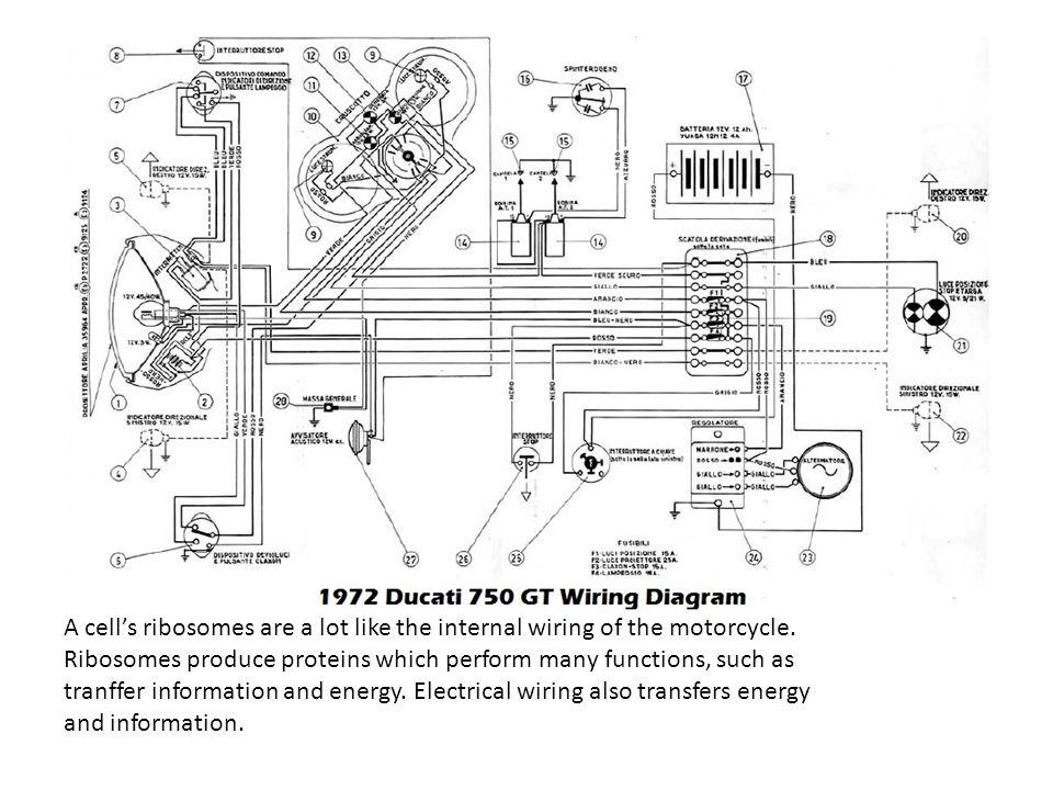 BMW R50 2 Wiring Diagram \u2013 Wiring Diagram Repair