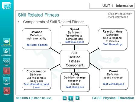 Skill-related fitness - ppt download - components of fitness