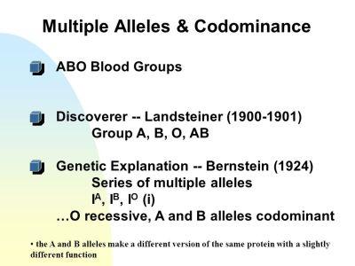 EXTENSIONS OF MENDELIAN GENETICS. - ppt video online download
