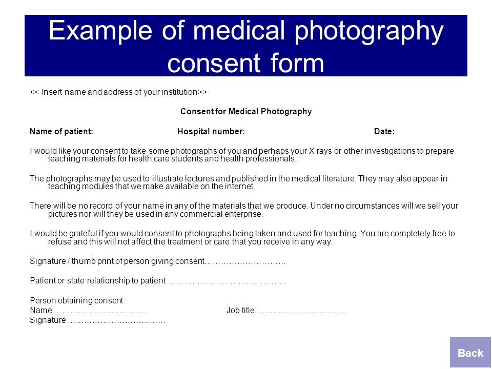 Photography Consent Form   ophion.co on animal intake form, medical release form, grooming intake form, grooming brochure, grooming release form, client intake form,