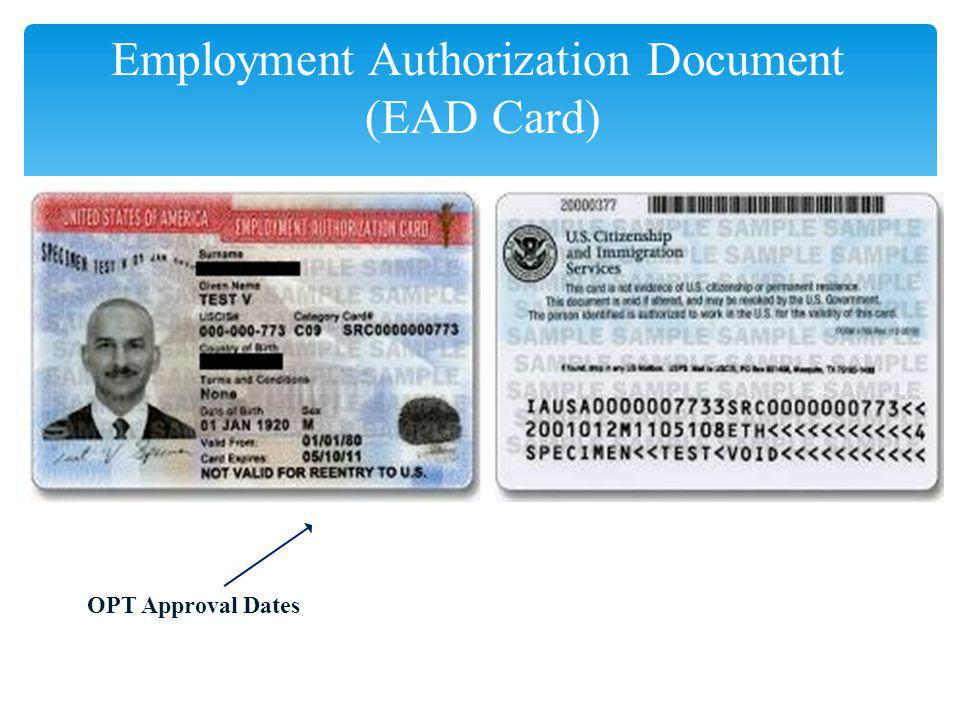 sample employment authorization form – Sample Employment Authorization Form
