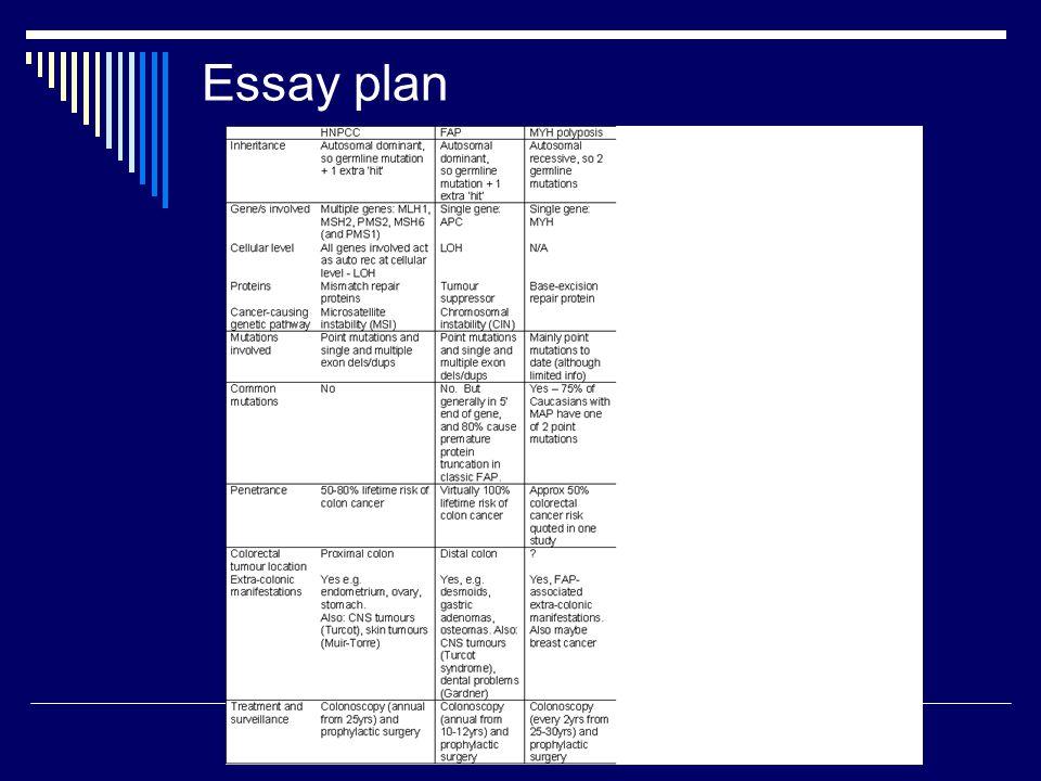 Ut plan ii application essay best essay websites