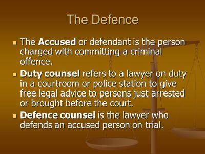 The Criminal Court System - ppt video online download