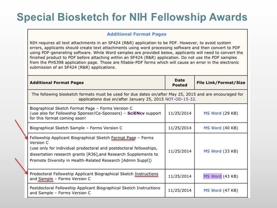 Writing a Winning NIH Biosketch - ppt video online download