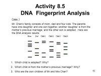 Dna Fingerprint Worksheet Worksheets For School - Getadating