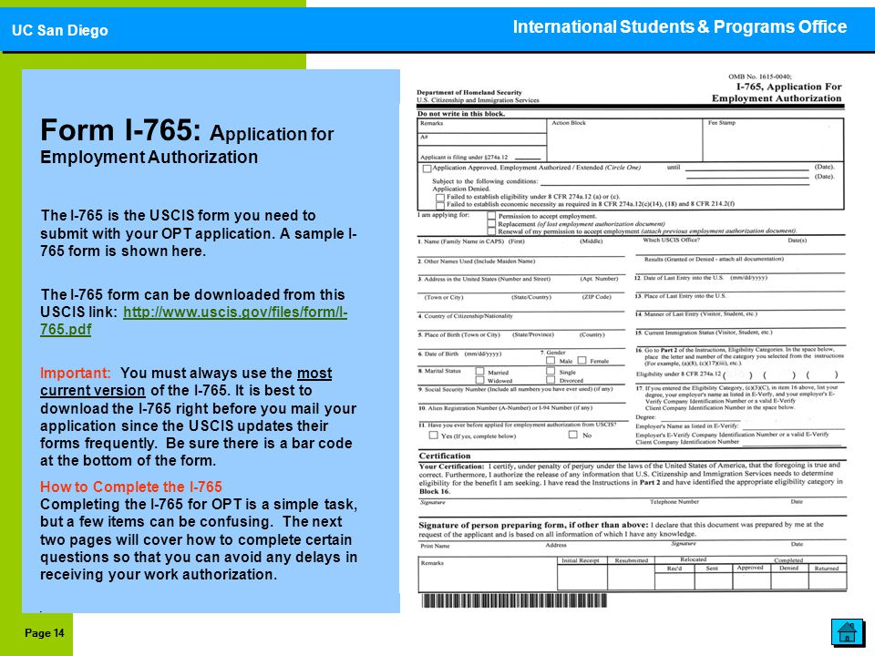employment authorization form example – I-765 Worksheet Sample