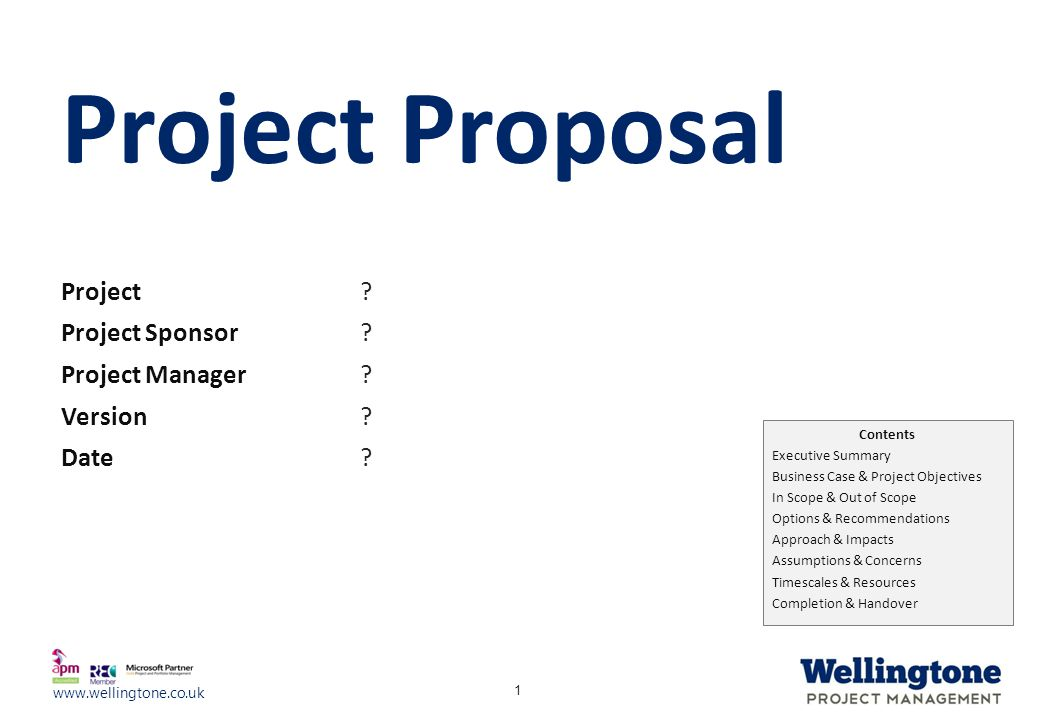 Project Proposal Project ? Project Sponsor Project Manager Version - project proposals