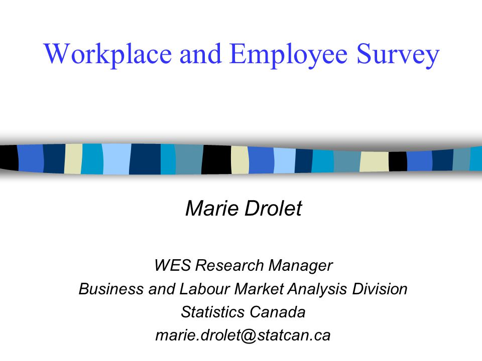 Workplace and Employee Survey - ppt download - employee survey