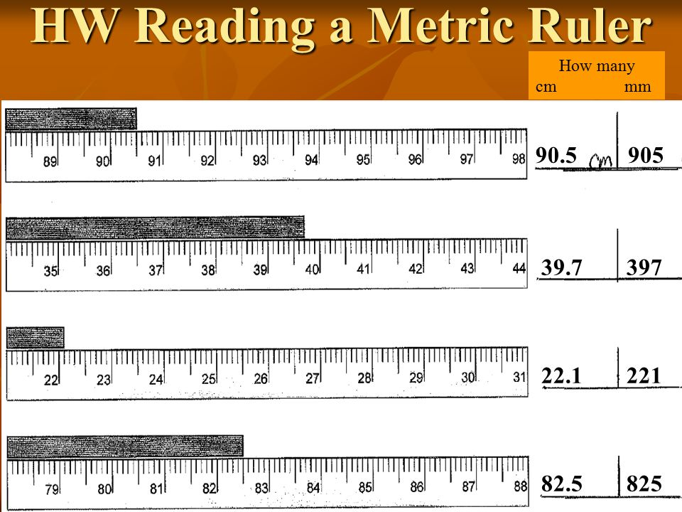 Reading A Metric Ruler Worksheet Worksheets Ratchasima