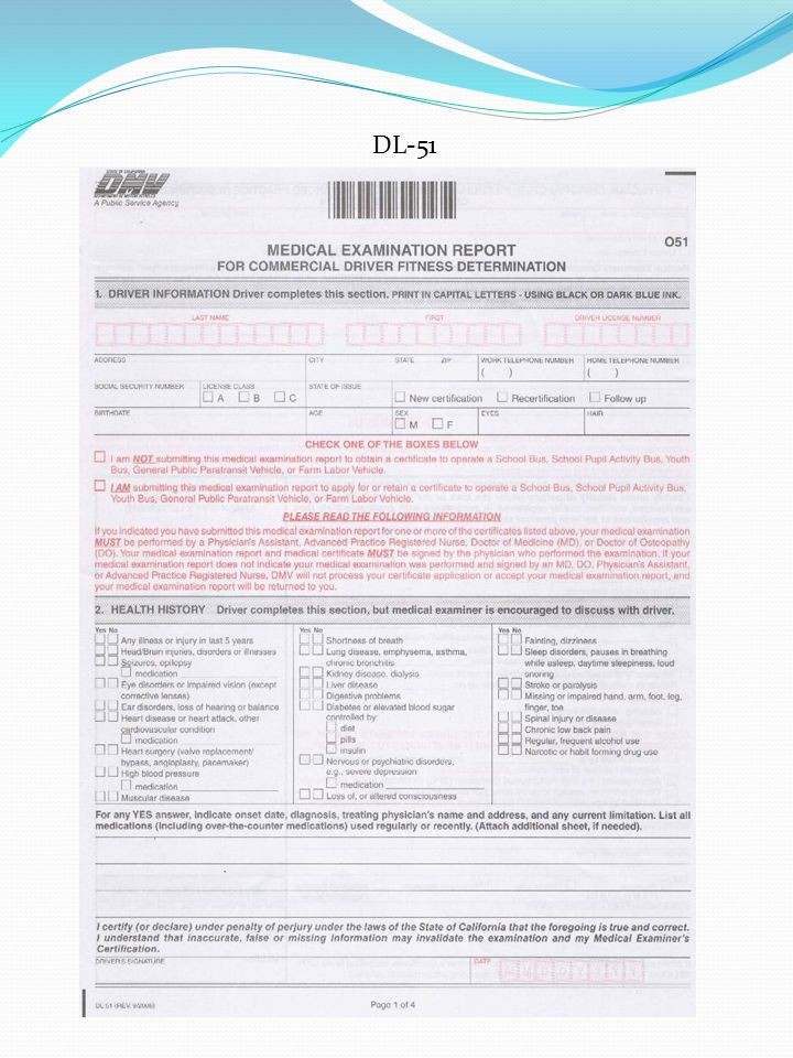 dmv form dl51 - Antaexpocoaching - fire service application form