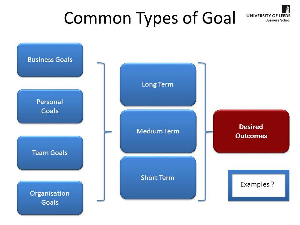 Long Term Goals Examples Business Report