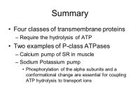 ATP Powered Pumps By Adam Attebery. - ppt video online ...