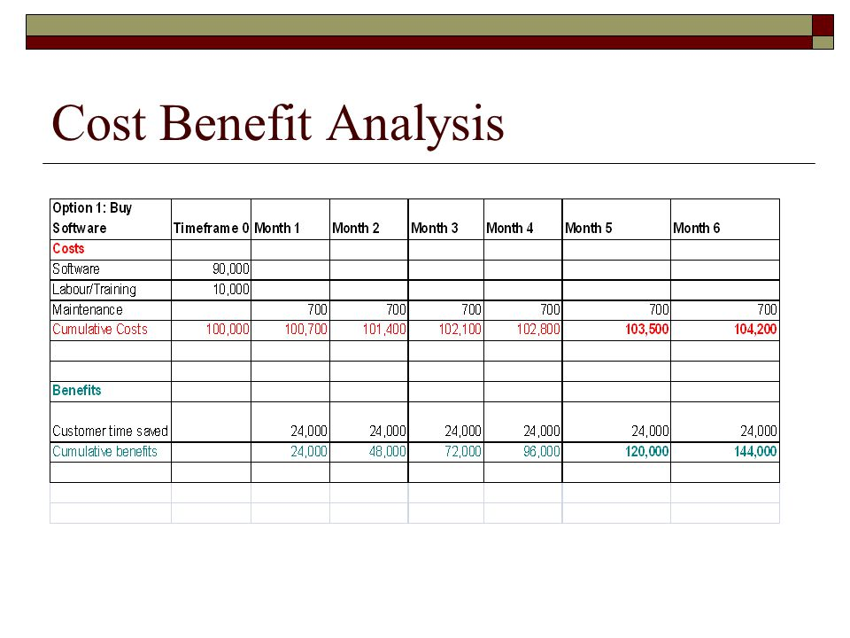 Cost Benefit Analysis Format - vheo