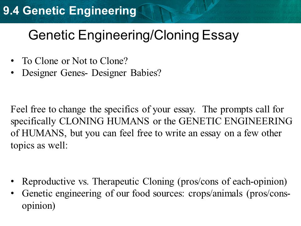 genetic essay biotechnology cloning genetic engineering ecosystems