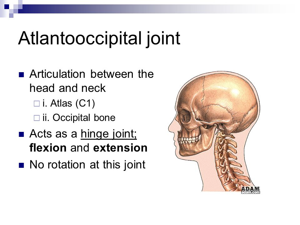 Atlanto Occipital Flexion - #GolfClub