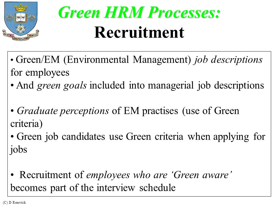 Human Resource Management - ppt video online download - human resource management job description