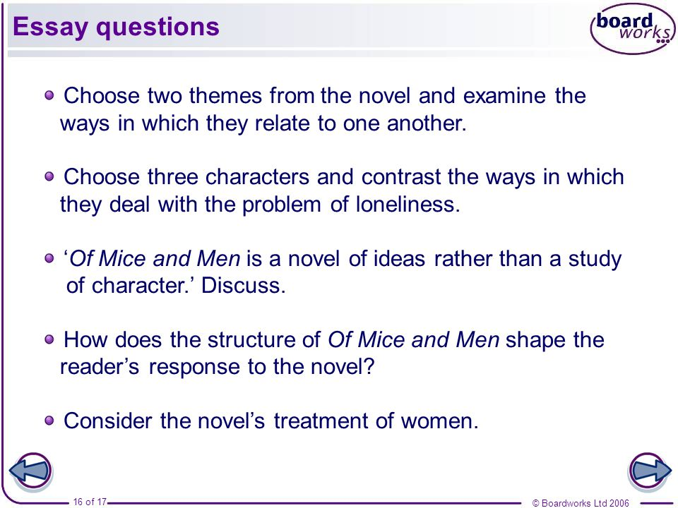 SparkNotes Of Mice and Men Suggested Essay Topics