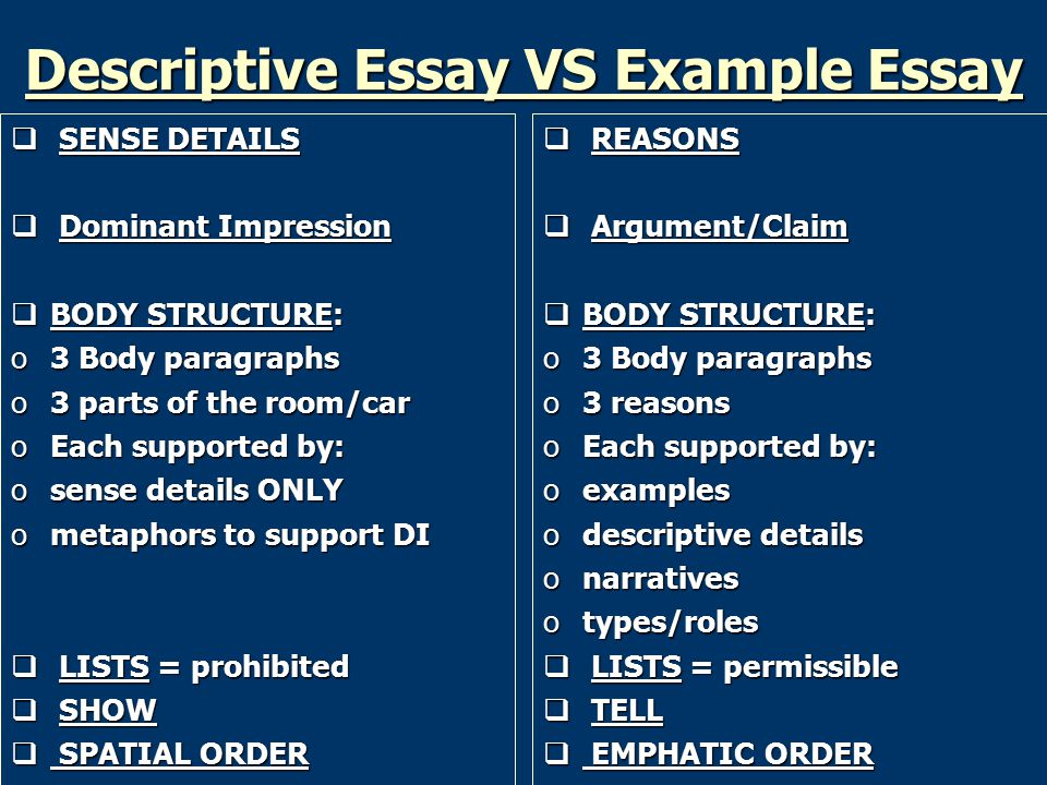 example for descriptive essay