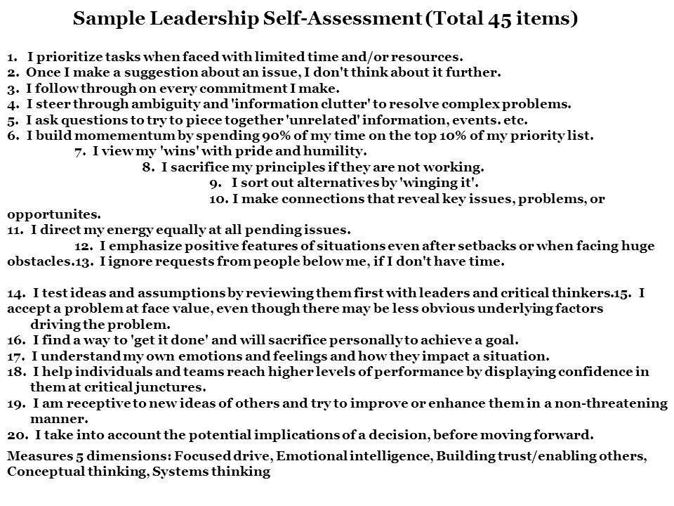employee performance self assessment self assessment sample self - leadership self assessment