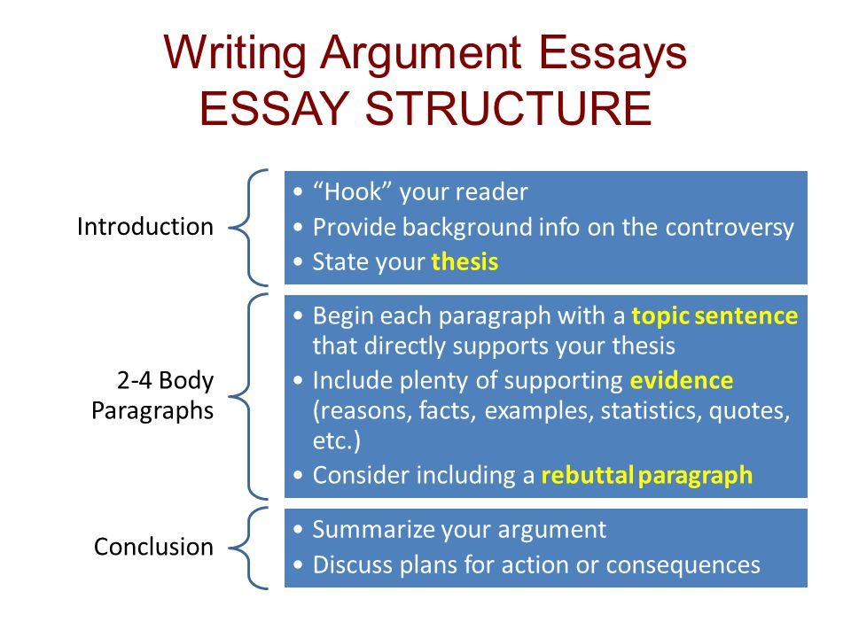 Argumentative body paragraph structure - Persuasive Essay Structure