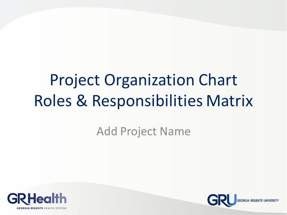 Project Organization Chart Roles  Responsibilities Matrix - ppt - project organization chart