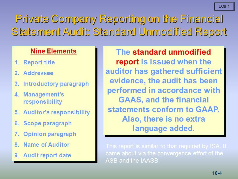 Assertion audit Essay Help