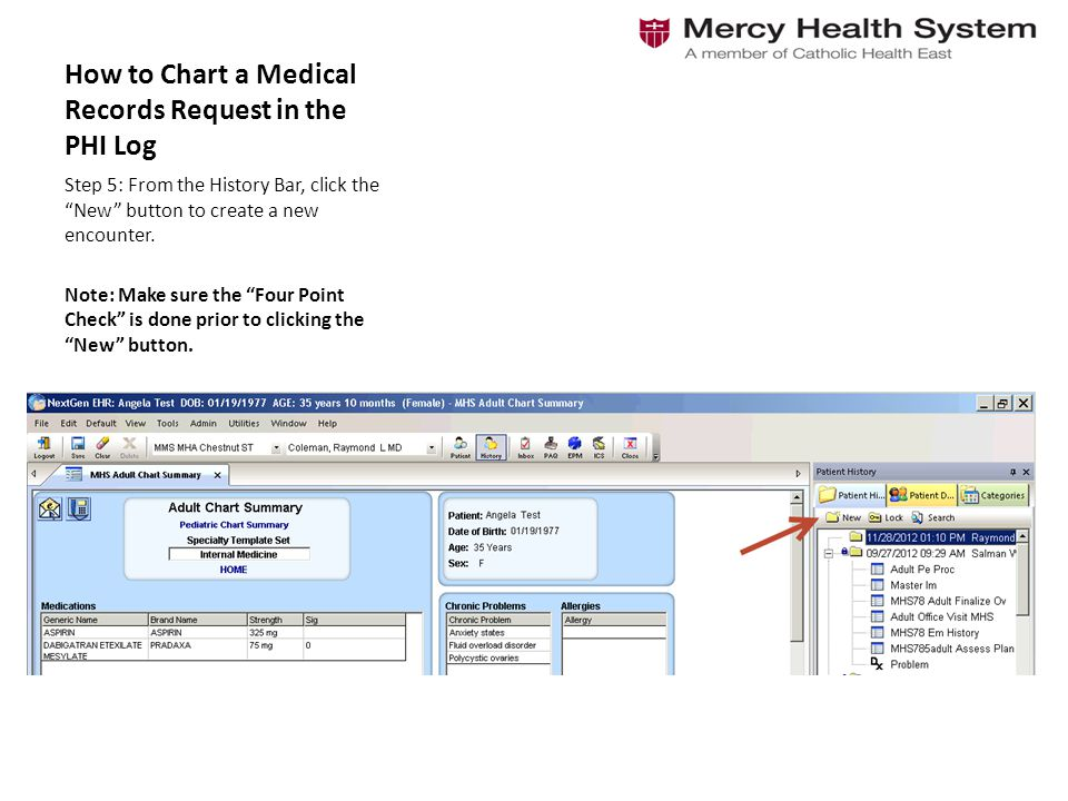 medical records chart - Brucebrianwilliams - Patient File Template