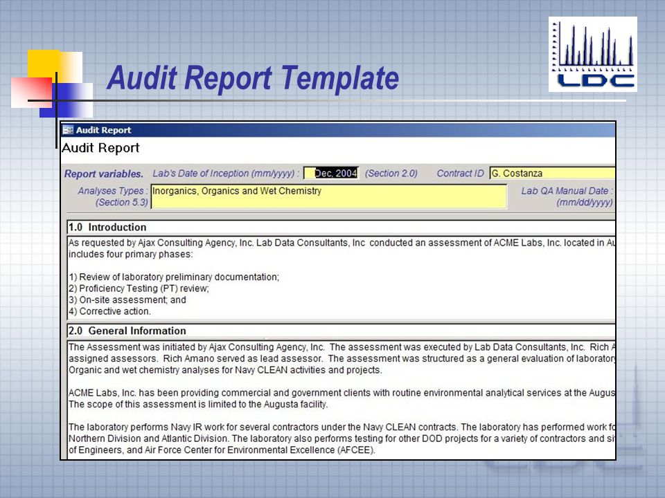 Audit Report Template - Costumepartyrun