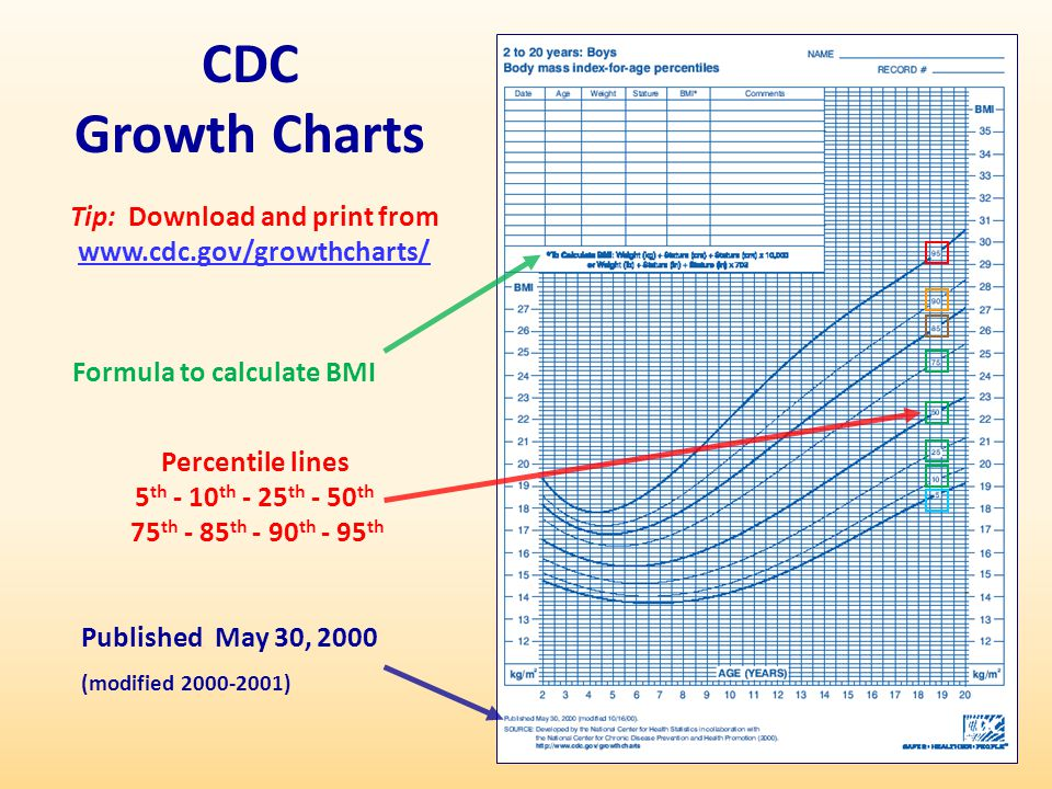 Cdc Growth Chart Template - Design Templates - cdc growth chart template