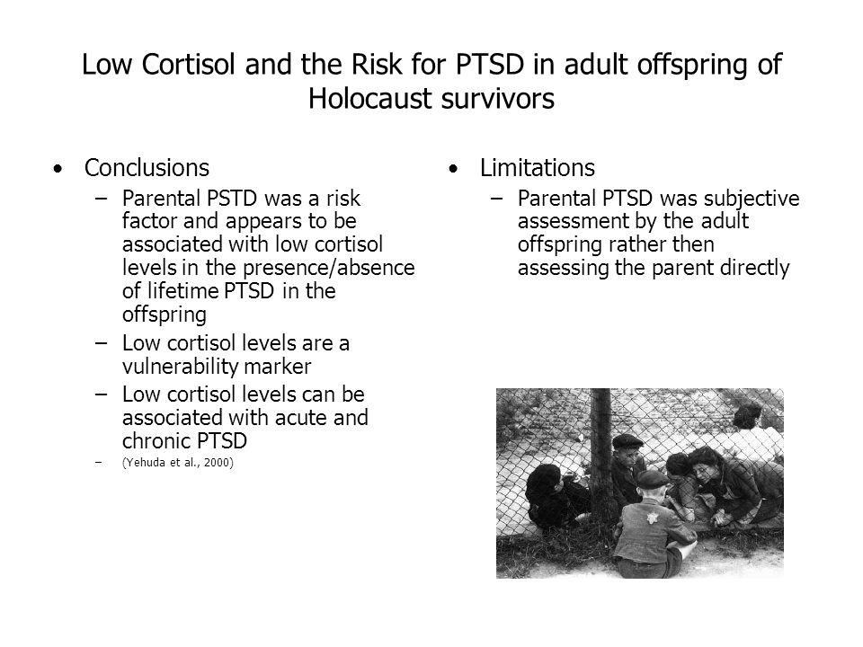 Affects Of Holocaust On Survivors Essay
