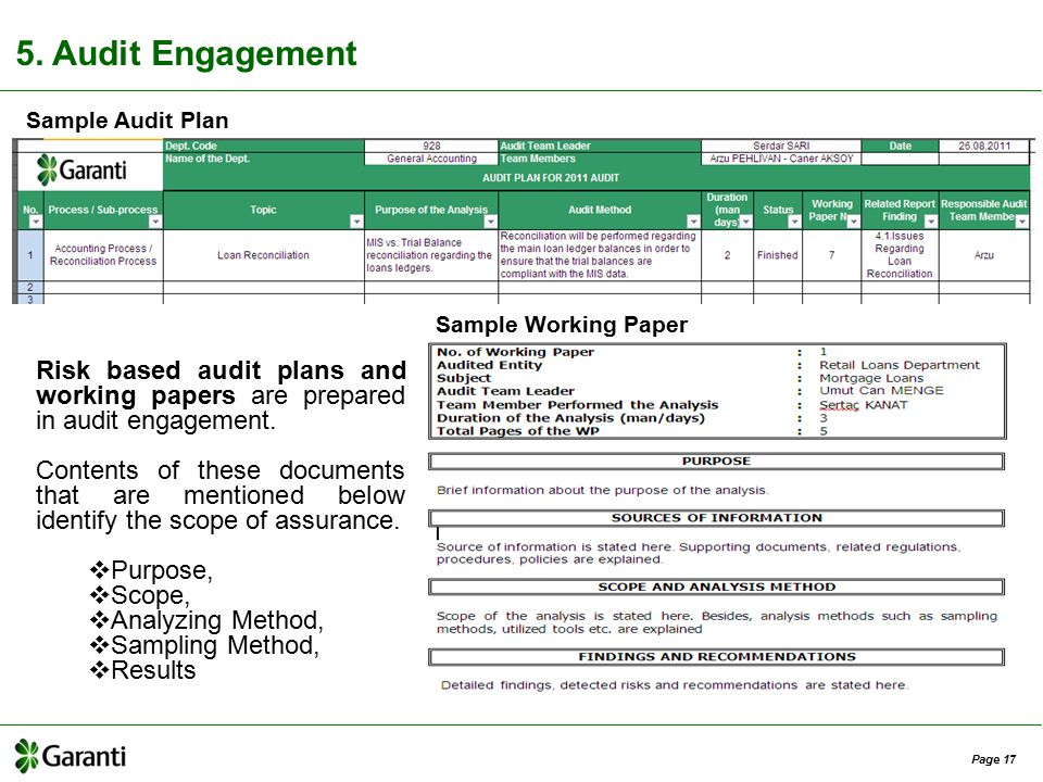 Internal Audit Working Papers Template