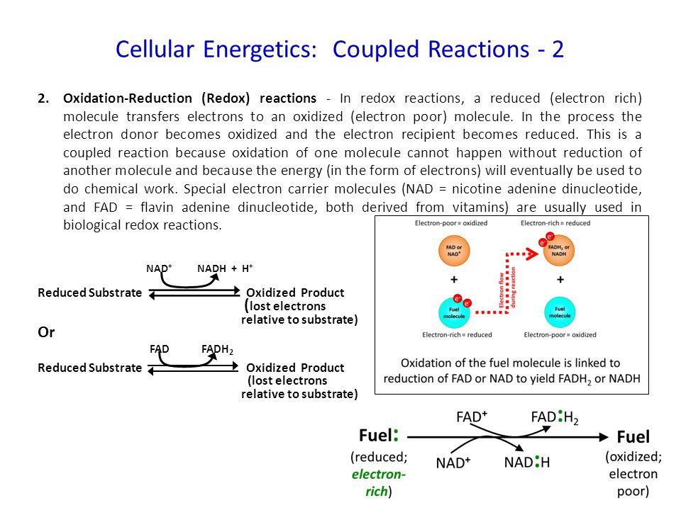 unitrol tm4 wiring diagram