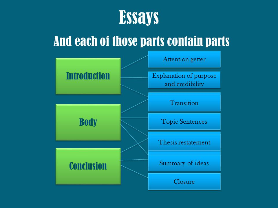body of a essay usamssciencefall body system essay assignment body - parts of an essay
