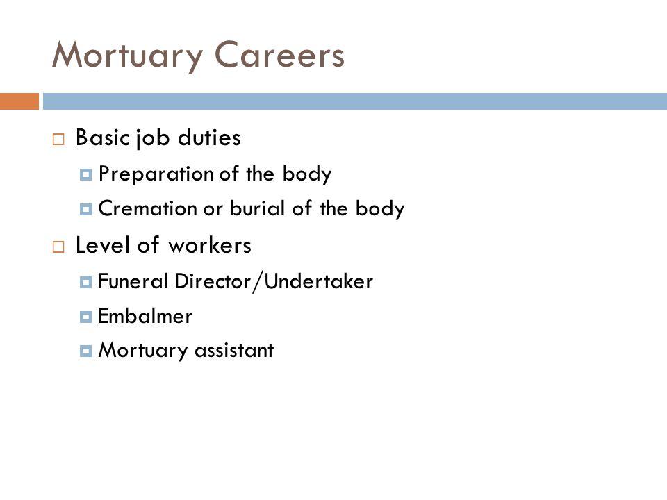 director of nursing job description pro-thai