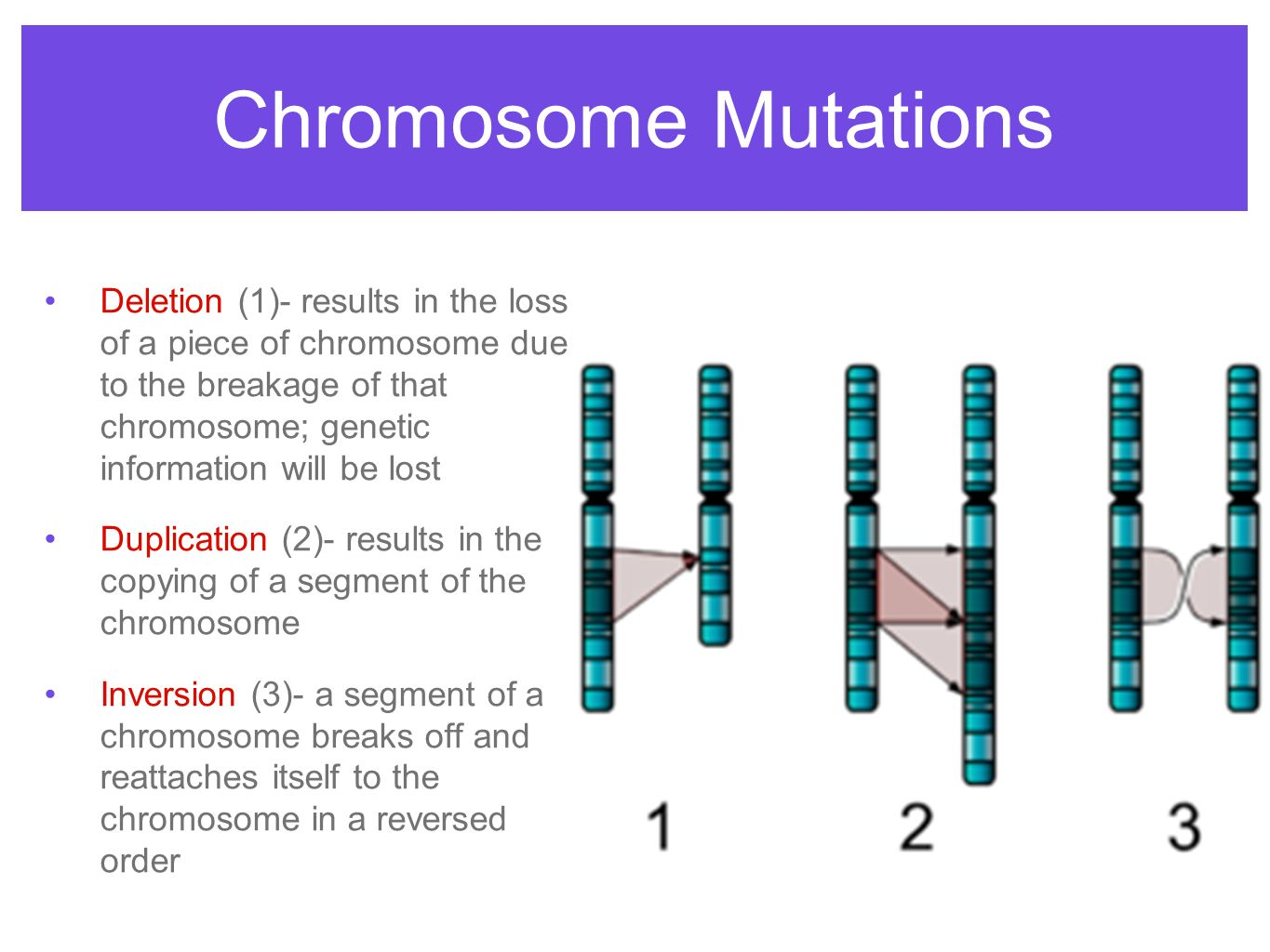 Chromosome Deletion Complex Inheritance And Human Heredity Ppt Video Online