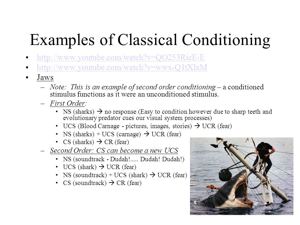 Unit 1 Exam Review Take a few minutes to review your exam In a - examples of classical conditioning