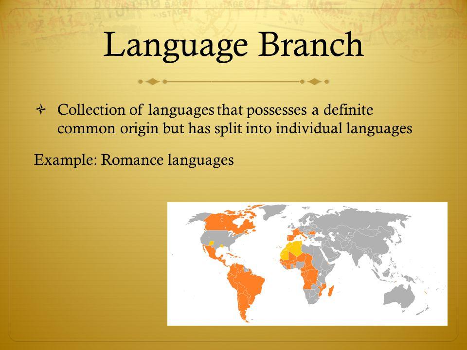 language branch example - Pinarkubkireklamowe